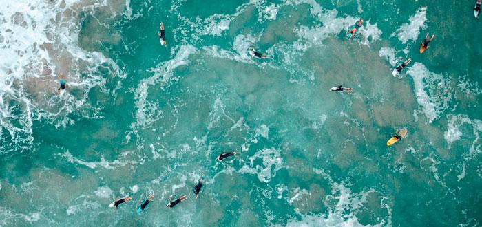 World Surf Gold Coast